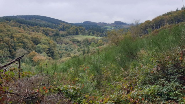 Brassac, sources de la Durencuse