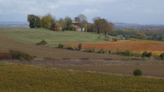 Hauts de Gaillac